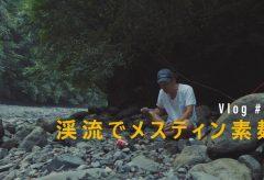 【Views】1306『渓流でメスティン素麺』5分59秒