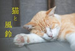 【Views】1310『猫と風鈴』3分56秒