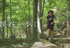 【Views】1343『渓谷を歩く』5分57秒