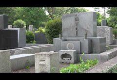 【Views】1356『新しき村霊園』5分