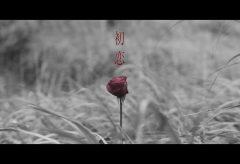 【Views】1389『初恋 -2020-』4分15秒