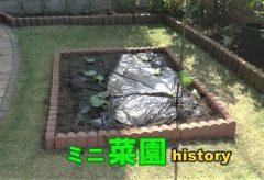 【Views】1390『ミニ菜園history』5分25秒
