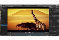 ソニー、XAVC S / XAVC HSのビューイングやクリップ管理のPCアプリケーション Catalyst Browse Version 2020.1等の提供を開始