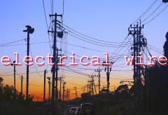 【Views】1455『Electrical wire 電線』3分40秒