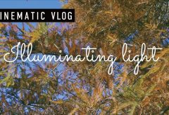 【Views】1473『Illuminating light | CINEMATIC VLOG』1分25秒