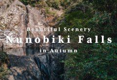 【Views】1478『Nunobiki Falls in Autumn -Beautiful Scenery-』3分10秒