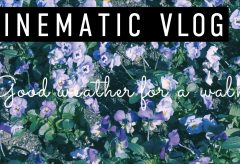 【Views】1531『Good weather for a walk | CINEMATIC VLOG』1分30秒