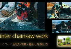 【Views】1628『Winter chainsaw work』1分