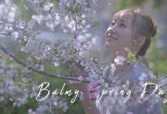 【Views】1671『Balmy spring day』1分19秒