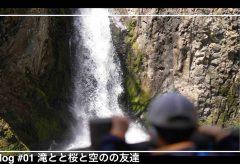 【Views】1684『滝と桜と空の友達』3分
