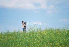【Views】1690『Flower – α7SIII S-Cinetone Cinematic Vlog 4K【JAPAN】』30秒