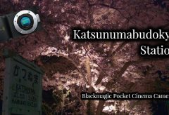 【Views】1712『夜桜と211系とOriginal BMPCC』1分56秒