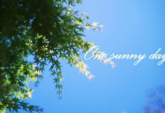 【Views】1715『One sunny day』2分9秒