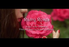 【Views】1753『Rainy Roses』1分47秒