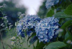 【Views】1760『Early Summer』2分42秒