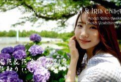 【Views】1824『紫陽花と花菖蒲』2分11秒
